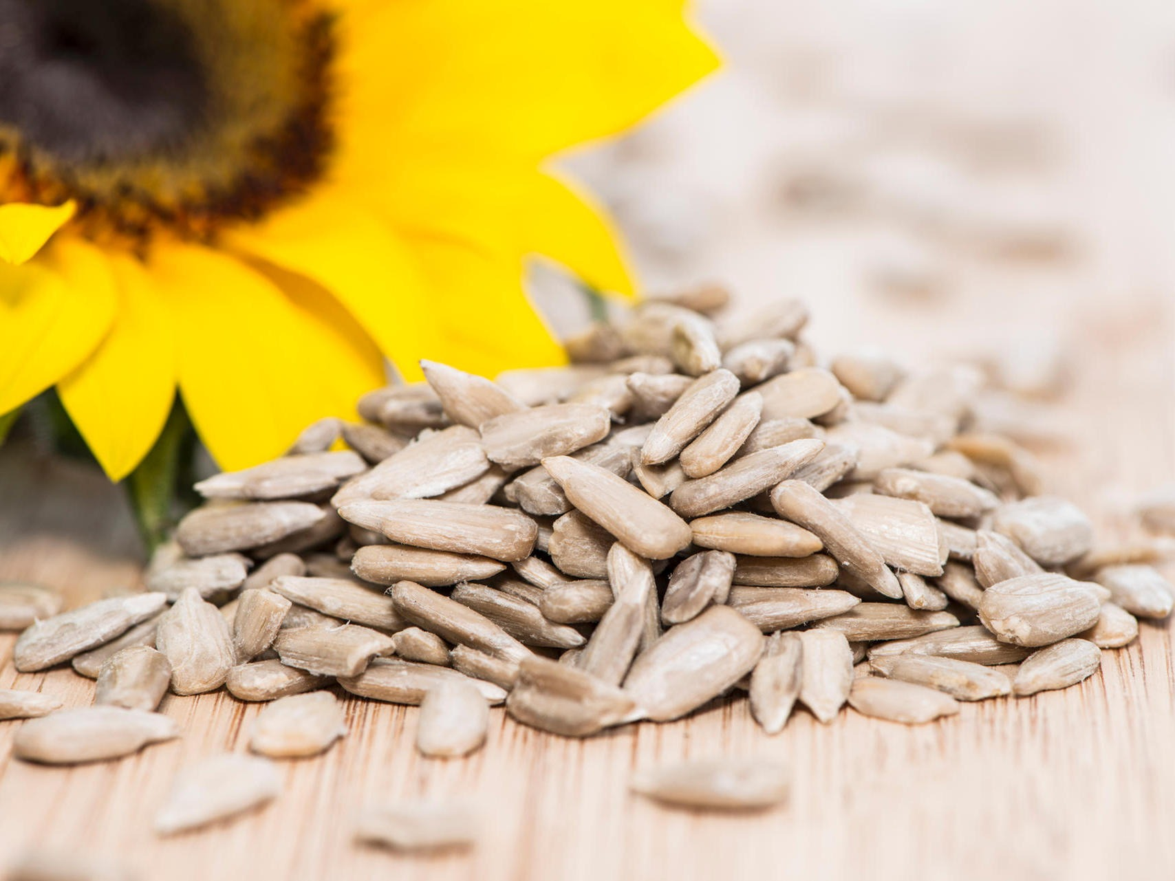 Sunflower with Seeds on wooden background (macro shot)