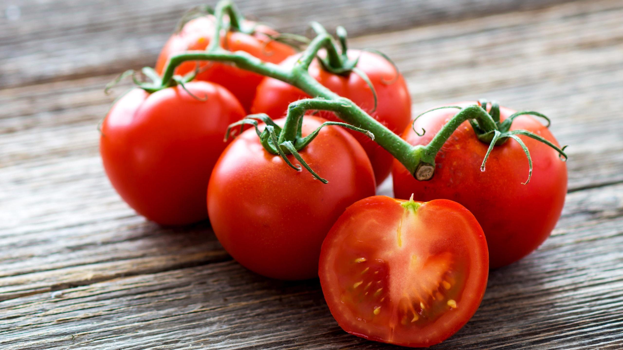 tomaten-das-sommergemuese-zum-selber-anbauen